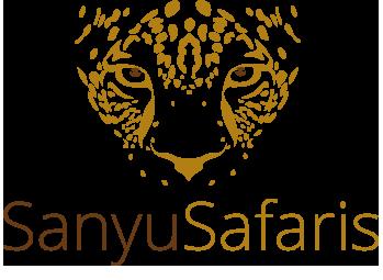logo-safari-retina